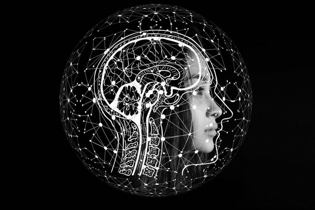 Aivot ja verkosto